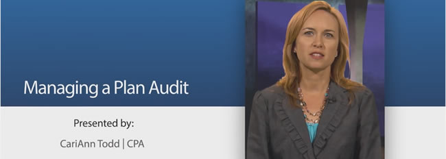 Plan Audit Series: Managing a Plan Audit (Video 2)
